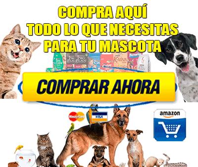 Compra productos y accesorios para mascotas en Amazon
